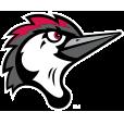 Fayetteville Woodpeckers